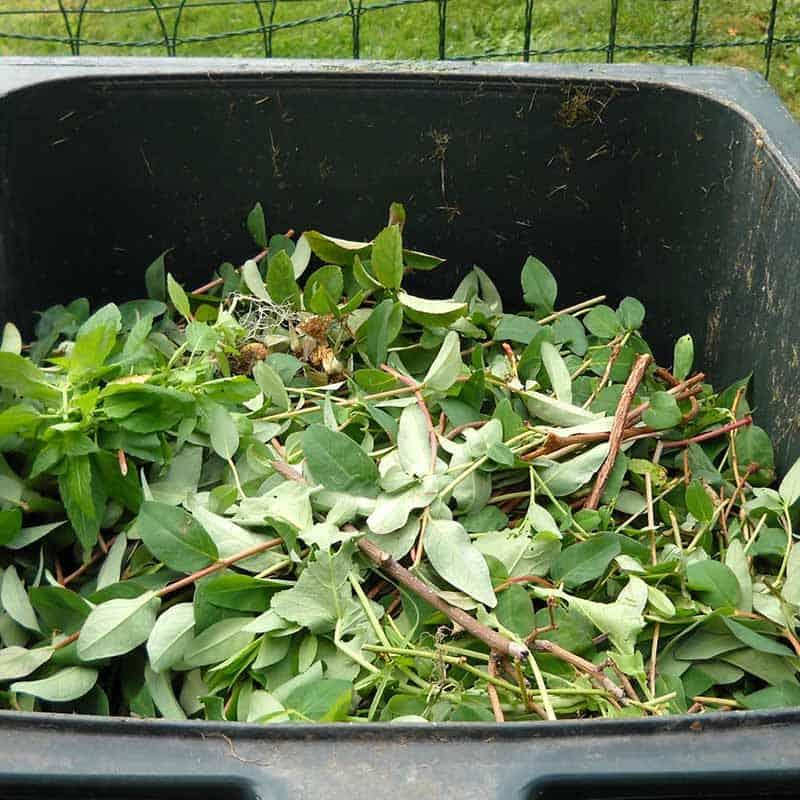 Ecosafe Green | Zero waste - Organic Bin waste