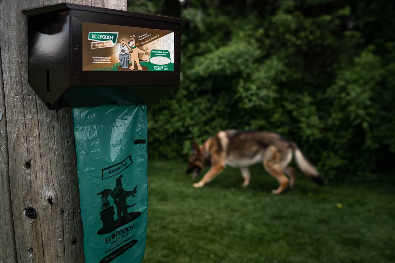 Ecosafe Green   Zero waste - dog waste bag and dog